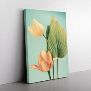 Tulipánok, zöld háttér